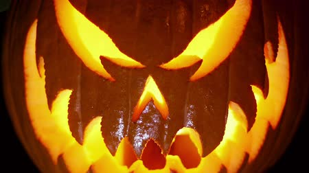 dynia : Jack Lantern Closes in Focus