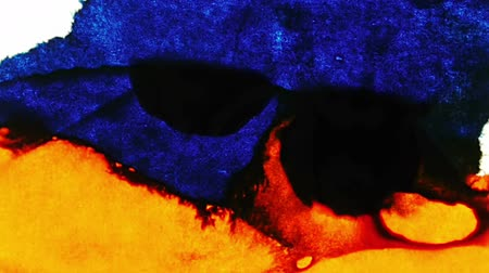 skvrny : Ink Stains Merging and Expanding (HD). Blue and Orange Ink Expands over time lapse on a white fiber surface.
