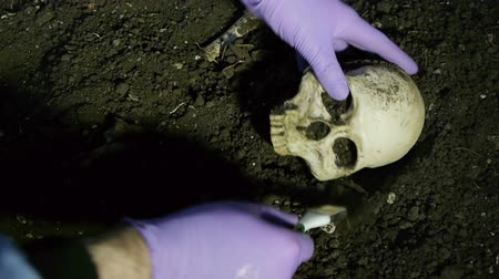 öldürmek : Taking Skull from Unearthed Crime Scene. For Paleontology or Police Crime Scene Videos. All Fake Ceramic Bones.