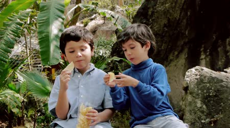 étkezési : Boys Share Potato Chips From Bag. Hispanic Kids are Brothers. Front View