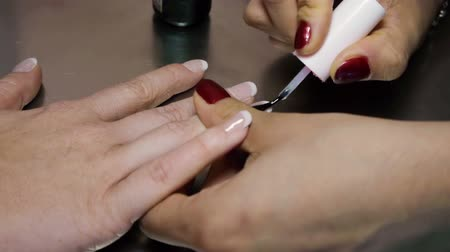 lakier do paznokci : Nail Polish Application Transparent Acrylic French Style Wideo