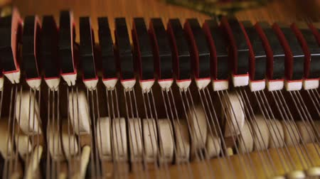 piyano : Close Up of Grand Piano Keys With Motorized Dolly Motion.