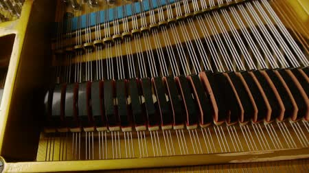 fortepian : Strings and Grand Piano Keys With Motorized Dolly Motion.