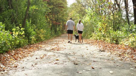cachorro : Young couple walking with their dog down a walking trail on a warm autumn day
