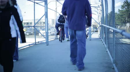 aluno : College students walking on a university campus. Stock Footage