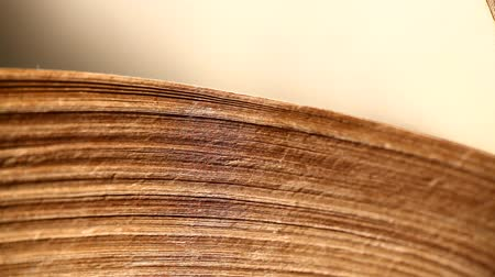 рукопись : Close up of history old book