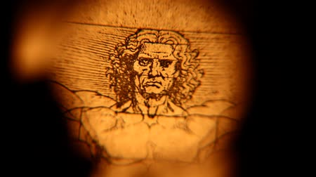 davinci : Leonardo da Vinci anatomy drawing Stock Footage