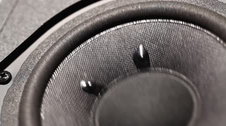multimediální : A Close up of an Audio Woofer