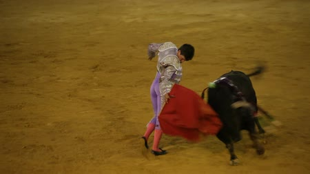 spaniard : La Linea de la Concepcion, Spain - July 19: Courageous Spanish matador provokes angry bull during traditional bullfighting on July 19, 2013 in La Linea de la Concepcion, Spain. Stock Footage
