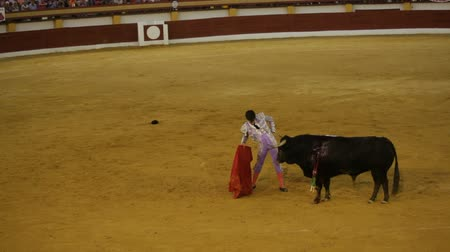 spaniard : La Linea de la Concepcion, Spain - July 19: Traditional Spanish bullfighting on July 19, 2013 in La Linea de la Concepcion, Spain. Stock Footage