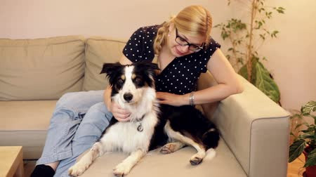 evcil hayvanlar : Happy woman relaxing with a dog on the sofa at home. Stok Video