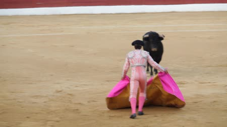 býci : La Linea de la Concepcion, Spain - 19 July 2013: Traditional Spanish bullfighting.