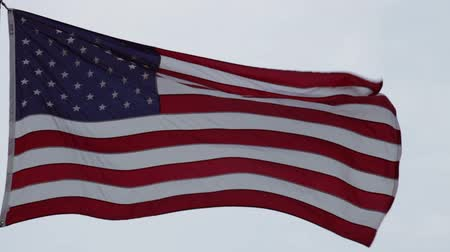 bandeira americana : The flag of the United States of America flying in wind, Washington DC, USA. Vídeos