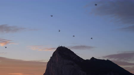 The Rock of Gibraltar and birds flying on tranquil sunrise sky, UK.