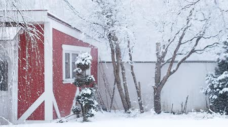heavy snowfall with red house and trees covered with snow in the background Stock Footage