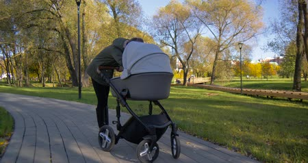 compreensão : Girl with a stroller walks in the Park Stock Footage