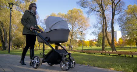 Girl with a stroller walks in the Park Vídeos
