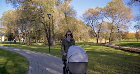 breathing fresh air : Girl with a stroller walks in the Park Stock Footage