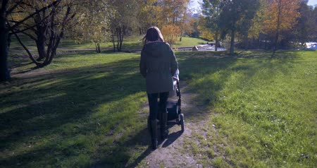 понимание : Girl with a stroller walks in the Park Стоковые видеозаписи