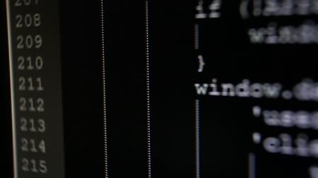 The display of the text flow of the source code instructions for a computer program on the PC screen. white symbols, black background.