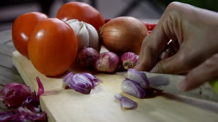 soğancık : Shallots, garlic, onions, and chili peppers on a wooden cutting board Stok Video