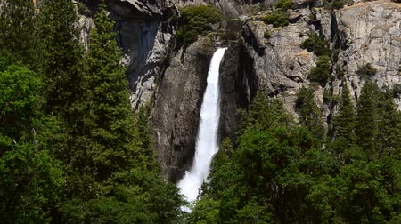 usa : Lower Yosemite falls in full glory in sprint time.