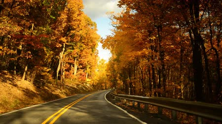 autumn : Time lapse of a drive through a hilly twisty road during glorious fall in rural Pennsylvania.  Stock Footage