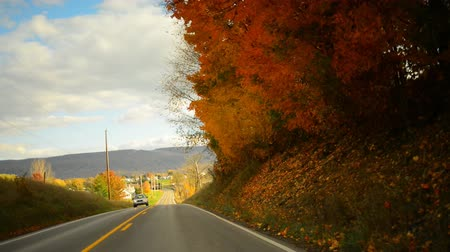 enrolamento : Time lapse of a drive through a hilly twisty road during glorious fall in rural Pennsylvania.  Vídeos