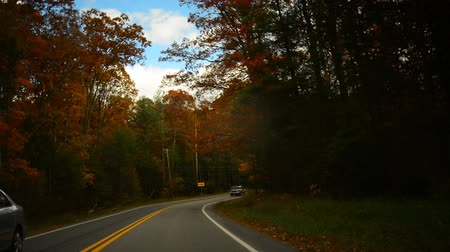 venkovský : Time lapse of a drive through a hilly twisty road during glorious fall in rural Pennsylvania.  Dostupné videozáznamy