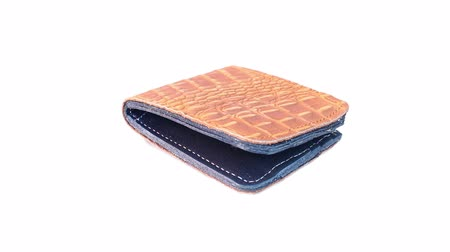crocodilo : wallet of leather rotating on isolated
