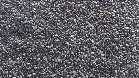 black sesame seeds rotation background