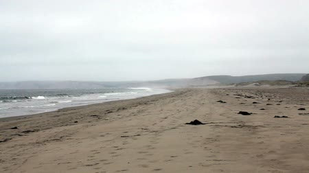 chaluha : Ocean Waves On Empty Beach Overcast Day