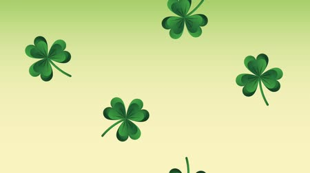 st patrick : Clovers falling over green background High definition animation colorful scenes