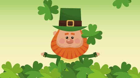 elfo : Cute elf inside clovers leaves High definition animation colorful scenes