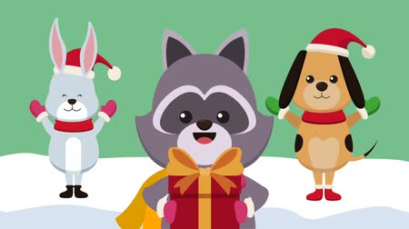 rabbits : Cute bunny raccoon and dog with santa hats and giftbox High definition animation colorful scenes