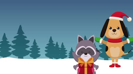 raccoon : Cute dog and raccoon with giftbox and santa hat High definition animation colorful scenes Stock Footage