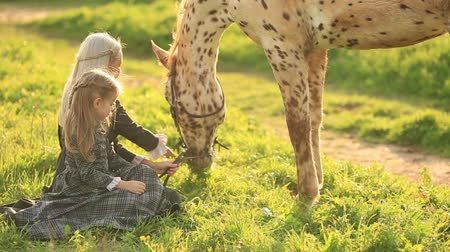 sivilceli : Girl embracing spotty horse on green meadow. slow motion full hd