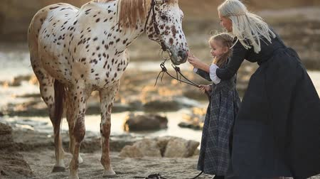 outdoor hobby : Therapy with horses hippo therapy. Woman in classic dress and mottled horse Stock Footage