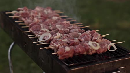 appetizing shish kebab : fried juicy and delicious pork barbecue