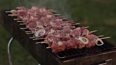 špejle : Appetizing delicious fried pieces of meat on skewers are roasted on a large grill in the open air
