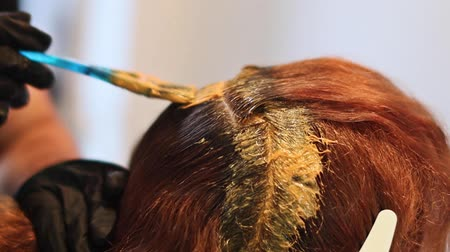 краситель : close up. hair dyeing concept. hairdresser colorist dye the hair of a woman with a brush