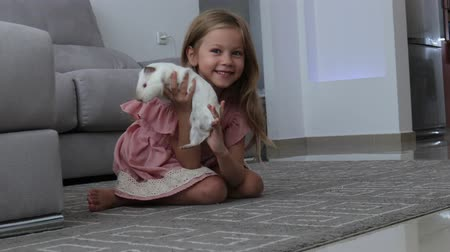 gine : Cheerful kid holding big white domestic guinea pig