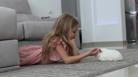 gine : cute little girl and guinea pig