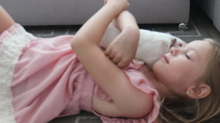świnka morska : Home animal child little girl plays with guinea pig pet lying on the floor. Wideo