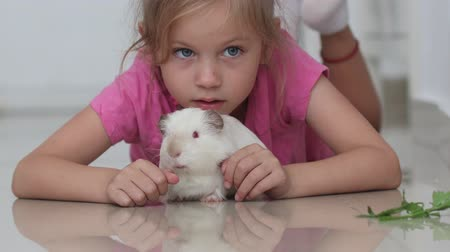 gine : Little girl lying on floor and white guinea pig