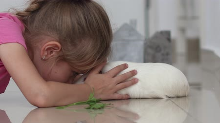 porquinho : cute girl without milk tooth plays with a domestic rat on a blurred background at home Stock Footage