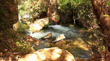 Greek stream in National reserve, North of Israel