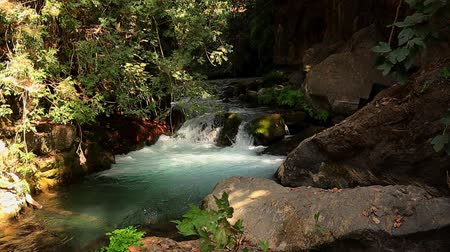 Nahal Hermon (Hermon Stream). Sanctuary of Banias Israel Stok Video