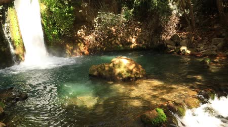 Nature Reserve and National park a popular place for tourist trips with locals and foreign tourists in the north of Israel Filmati Stock