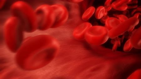 gotículas : 1080p HD stock video of blood cells traveling through a vein. Stock Footage